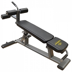 Element Fitness Commercial Ab/Crunch Bench