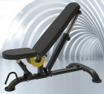 Fittrax Deluxe Flat/Incline Bench