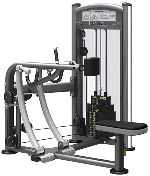 Element Fitness TITANIUM Vertical Row