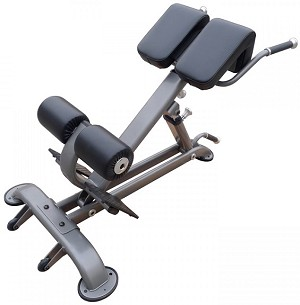 Element Fitness Commercial Fitness Hyper Extension Bench