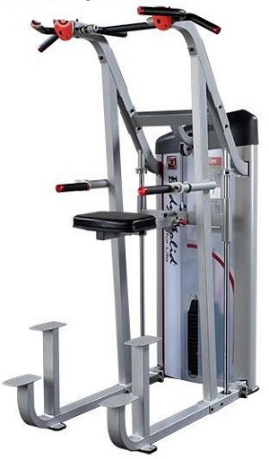 Body Solid Series 2 Assisted Chin and Dip Machine