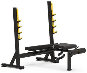 Fittrax Adjustable Olympic Bench